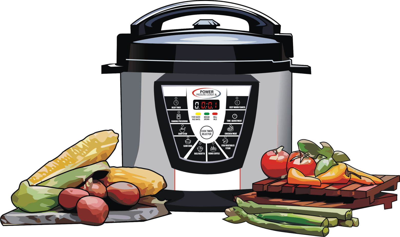 Power Pressure Cooker XL 2